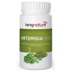 Artemisia Mini, 160...